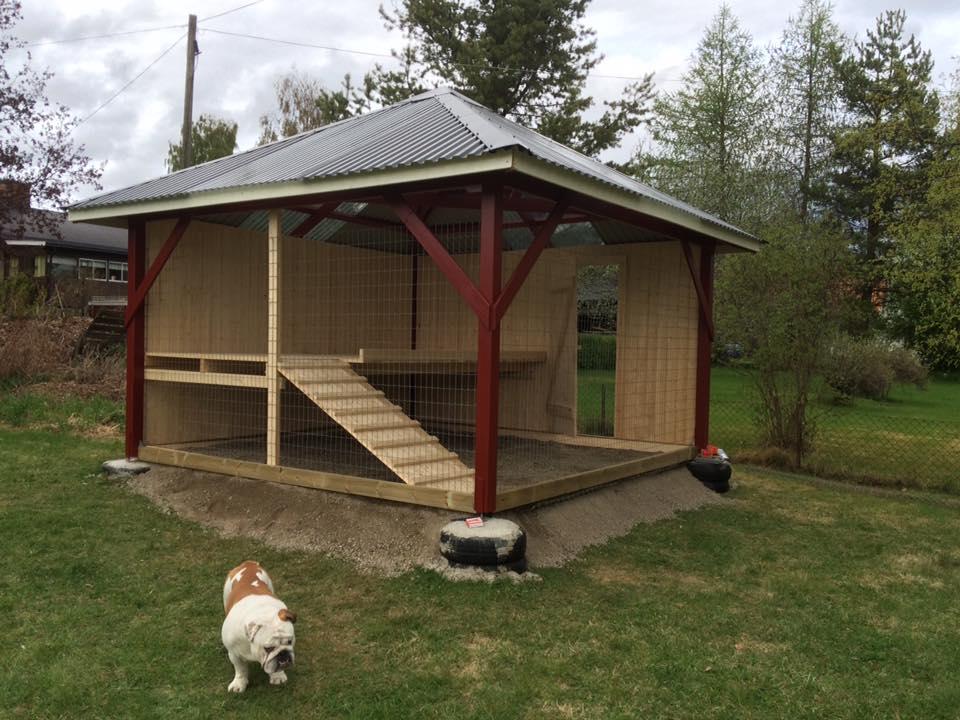 Paviljong hundgård